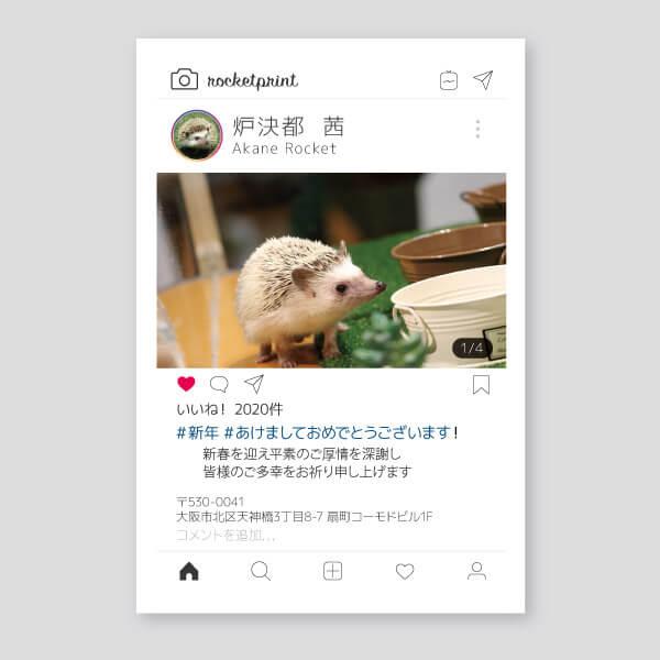 Instagram風プロフィールにかわいいハリネズミ