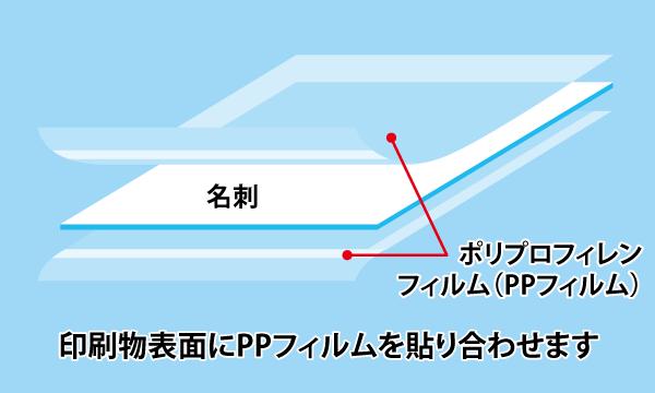 標準で両面PP貼り加工